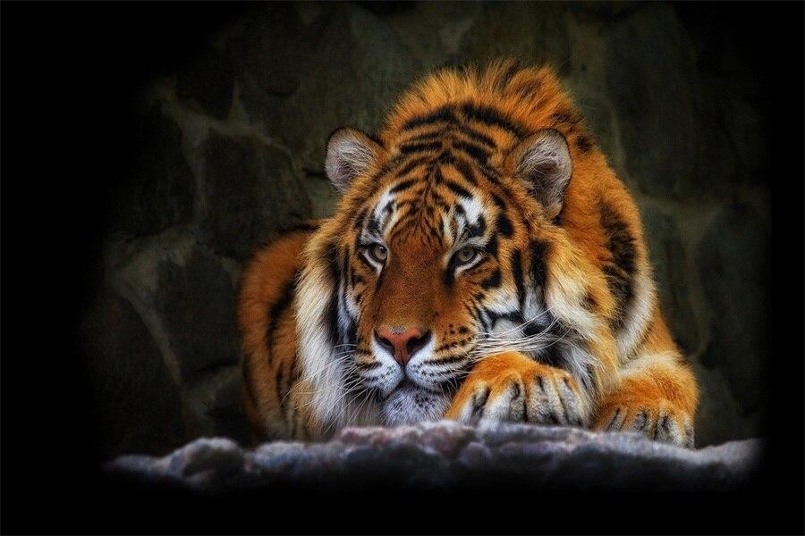 Custom Canvas Art Big Tiger Poster Wild Cat Animal Wallpaper Tiger Wall Stickers Kids Sticker Mural Bedroom Decoration #2877#