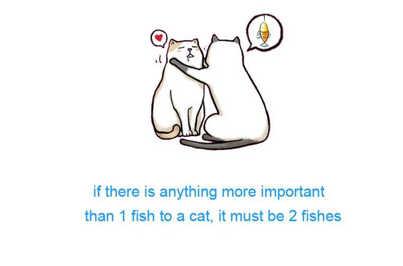 if there is anything more important than 1 fish to a cat, it must be 2 fishes
