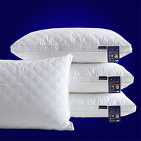 Thickened Feather Pillow Pillow Core Bedding Set 48*74cm Solid Color Pillow Inner Bedroom Home Textile Home & Living