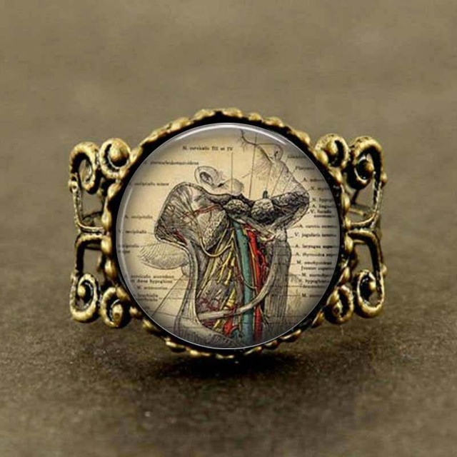 Human Anatomy Throat Anatomy Gothic Doctor Ring Jewelry Science