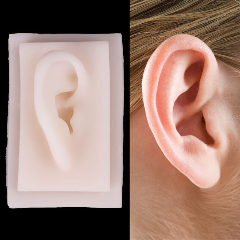 Human Soft Silicone Right Ear Model Life Size Acupuncture Study Practice Tool 9.5 x 6cmHuman Soft Silicone Right Ear Model Life Size Acupuncture Study Practice Tool 9.5 x 6cm