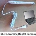6 levou câmera Intra oral Câmera USB Casa dentes Dentista luz photo shoot Oral Dental Intraoral USB Camera endoscópio endoscópio