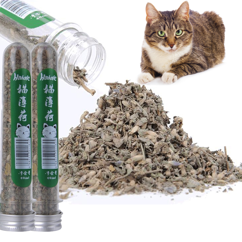 Healty Cat Catnip Toys 100 Natural Quality 10g Catnip Organic Cattle Grass Menthol Flavor Funny Cat Toys Tube 40ml Pet Products in Cat Toys from Home Garden