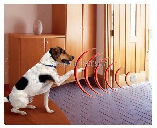Huisdier Indoor Draadloze Fence Dog training kraag Hond Elektrische Shock Hek Omheining Hond Huisdier Manager voor 2 honden-in Trainingshalsband van Huis & Tuin op  Groep 3