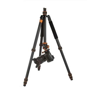 Image 3 - QZSD Q1088C 写真炭素繊維デジタルカメラの三脚軽量胃袋パノラマヘッド一脚カメラアクセサリー Tripodes