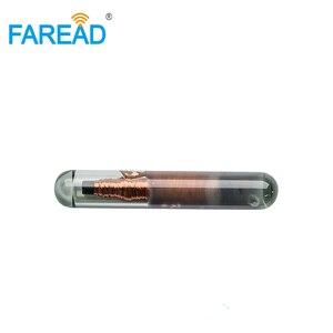 Image 3 - 무료 배송 가장 작은 동물 id 태그 1.25x7mm iso11784/85 애완 동물 물고기 rfid 마이크로 칩 유리 태그 트랜스 폰더 icar 인증
