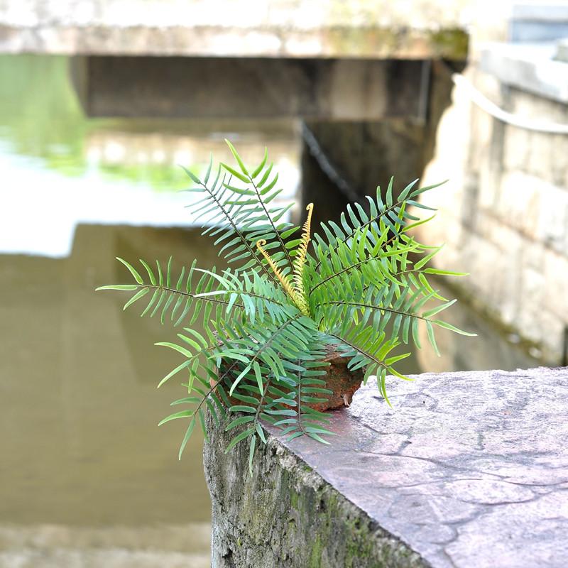 arrurruz planta de agua decoracin de la pared de flores de plstico plantas ma