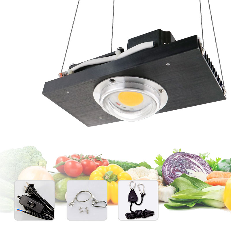 CREE CXB3590 COB LED Grow Light Full Spectrum 100W 200W Citizen LED Plant Grow Lamp for