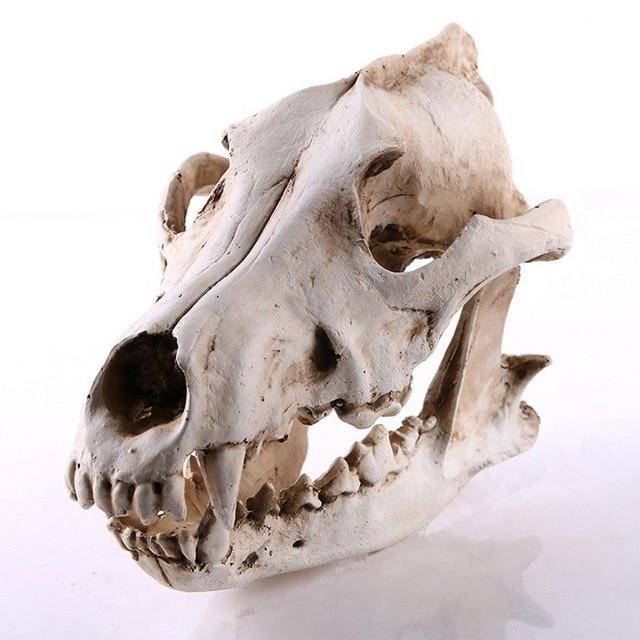 Resin Craft Halloween Decoration Animal Skull Statues