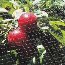 WCIC Bird Net Garden Mesh Protect Gardening Fruit Tree Vegetable Protection Pest Control Nylon Anti Netting Pond Crops Trap