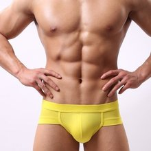 Men Briefs Underpant Low Waist Casual Breathable Brand