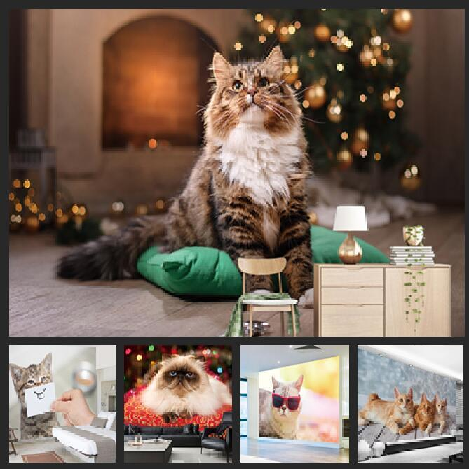 Custom Photo Cartoon Cute Cat Murals Wallpaper Walls Roll Modern Simple Living Room Bedroom Wall Papers Home Decor Painting