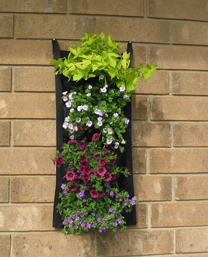 free shipping garden suppliers home decoration planter green wall