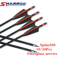 https://ae01.alicdn.com/kf/HTB10_hYaLjsK1Rjy1Xaq6zispXaM/10-20Pcs-30-500-Arrow.jpg