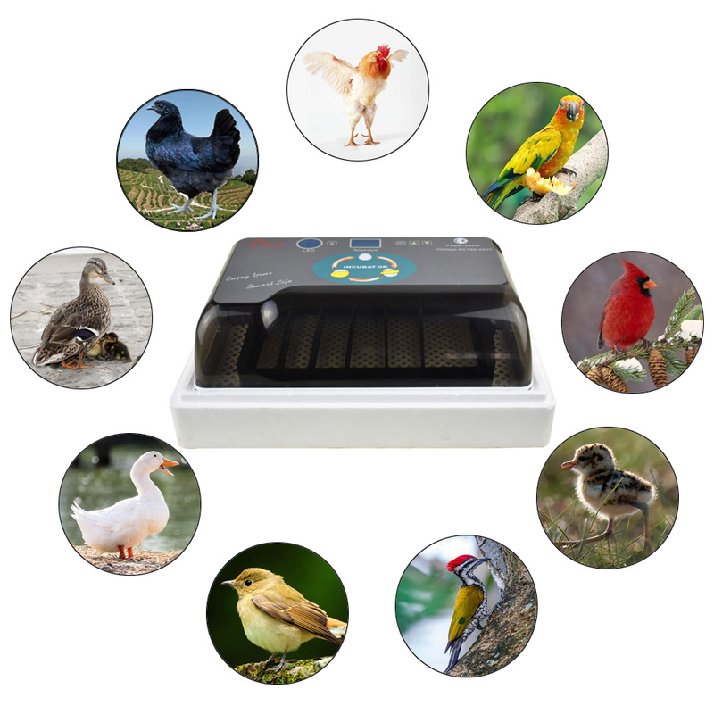 Automatic Intelligent Digital Egg Incubator Hatcher Large Capacity Practical Incubators For Chicken Poultry Quail Eggs Home Use
