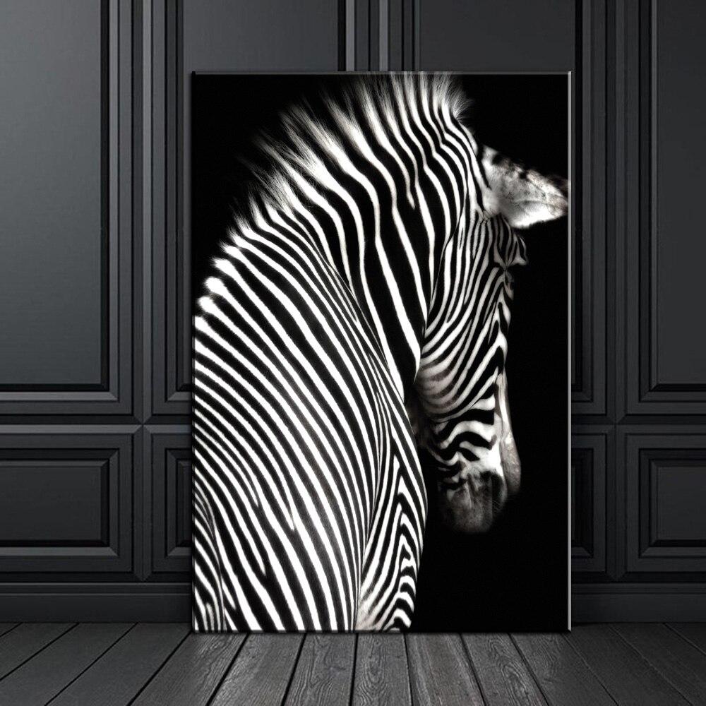 после постеры зебра фото ним начинаю