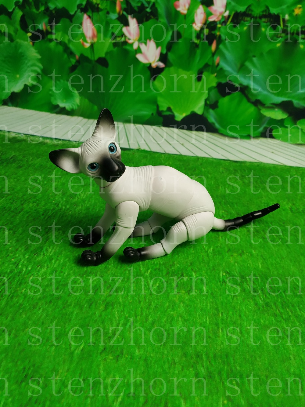 Stenzhorn  New Bjd Doll - Hairless Cat Animal Toy Fashion Doll Free Eyes
