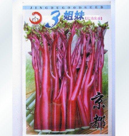 30pcs/bag purple vegetable seeds DIY home garden free shipping