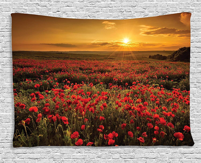Poppy Decor Tapestry Poppy Field at Sunset Sun Beams Meadow Cloudscape Wildflower Scene Wall Hanging Bedroom