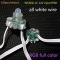 DC12V WS2811 LED smart string,addressable,with all WHITE color wire,IP68 rated;epoxy resin filled;100pcs a string