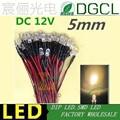 100pcs 12V/24V Pre-wired 5mm Bright LEDs Bulb Warm white/Red/Green/Blue/Yellow/White/Pink 20cm Prewired LED Lamp LED LIGHTING