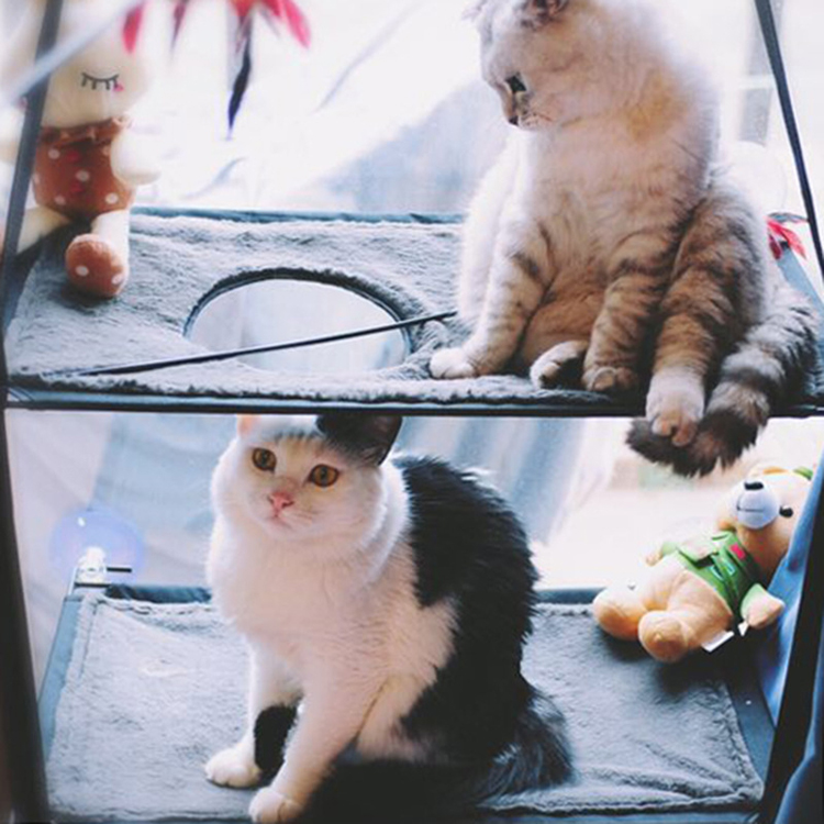 Cat Lounger Cat Hammock Bed Mount Window Cat Lounger Suction Cups Warm Bed For Pet Cat Rest House Soft Comfortable Bed #4
