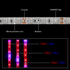 Image 4 - 5 M LED Phyto Lamps 전체 스펙트럼 LED 스트립 빛 300 LED 5050 칩 LED Fitolampy 온실 수경 식물에 대 한 조명을 성장