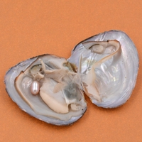 Wholesale 100pcs Akoya Vacuum Pack Fresh Oysters With Pearls Beads 7 8mm Freshwater Pearl Xmas Gift