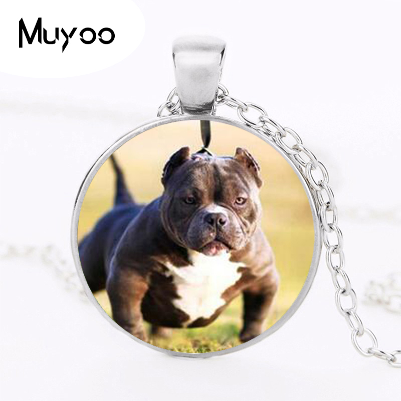 Mail Bully Dog Necklace Dogs Love Pendant Choker Necklace My Friend Footprints Convex Circular Glass Necklace Animal Jewelry HZ1