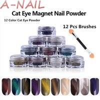 12 Color Cat Eye Powder 1 Pcs 3D Effect Cat Eye Magnet 12 Pcs Brushes Magic