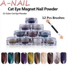 12 color Cat Eye Powder + 12 Pcs Brushes Magic Mirror Powder