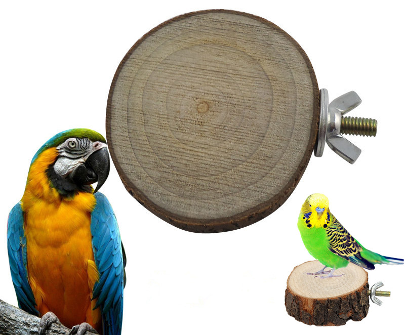 Round Wooden Squirrel Parrot Bird Perch Stand Platform Pet Bird Hanging Toy