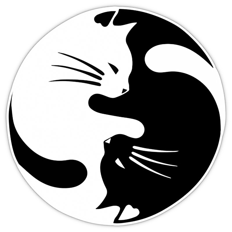 Yin And Yang Cat Pet Lover Car Sticker For Truck Window Bumper Door Vinyl Decal Car Styling Accessories