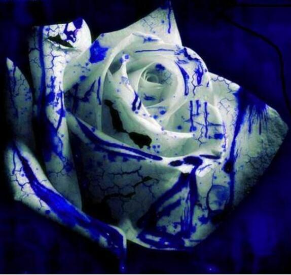 Новый ручной 5D DIY Алмаз Живопись Красочные розы квадратный алмаз Вышивка все место детализации изображения fz190