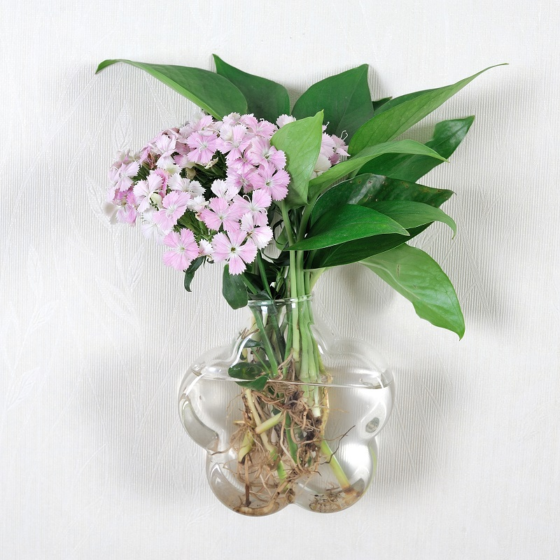 Creative wall-hanging glass vase hydroponic simple transparent wall decoration green dill home decoration