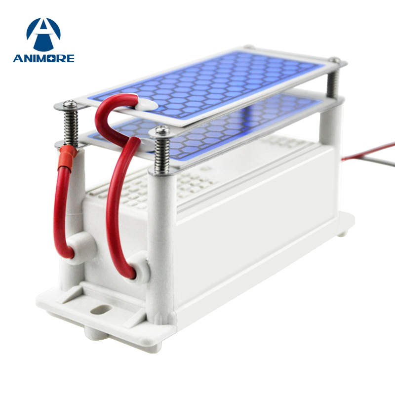 ANIMORE Ozone Generator 220V/110V 10g Double Integrated Ceramic Plate Ozone Air Ozonizer For Household Air Water Air Purifier dc 220v 10g h ozone generator double ceramic plate water air purifier sterilizer for home car ozone generator air sterilizer