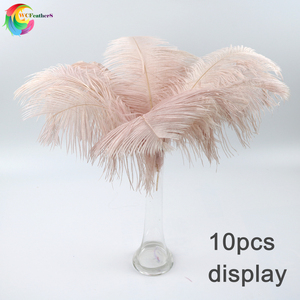 Image 1 - Wholesale 10 Pcs/Lot baby pink Ostrich Feathers For Crafts 35 40CM Carnival Costumes Party Home Wedding Decorations Plumes