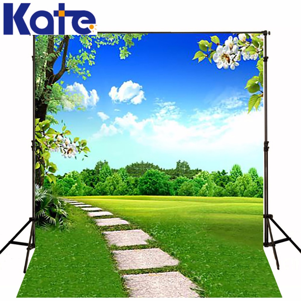 300CM*200CM(about 10ft*6.5ft) backgrounds Grass prairie road lined with trees flowers photography backdrops photo LK 1304 300cm 200cm about 10ft 6 5ft backgrounds plush blanket windows leaves photography backdrops photo lk 1492