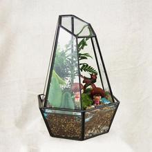Hexagon Modern Glass Geometric Terrarium 2 Part Tabletop Succulent Fern Moss Plant Terrarium Box Bonsai Flower Pot