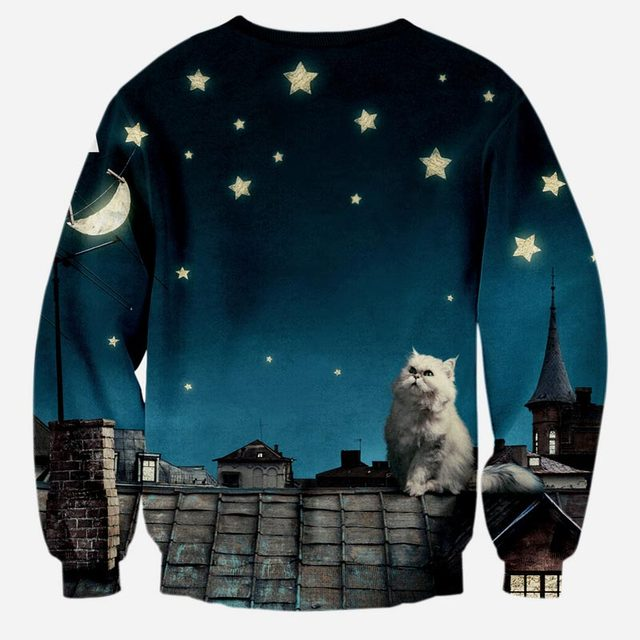 3D cat sweatshirt chase your dreams