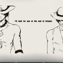 Ace and Luffy Wall Poster