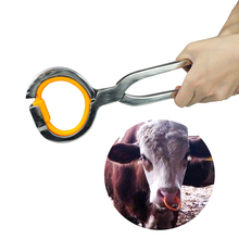 1 Pcs Livestock Cow Cattle Nose Plier & 10 Rings Stainless Steel Installation Clamp Horse Farm Tools