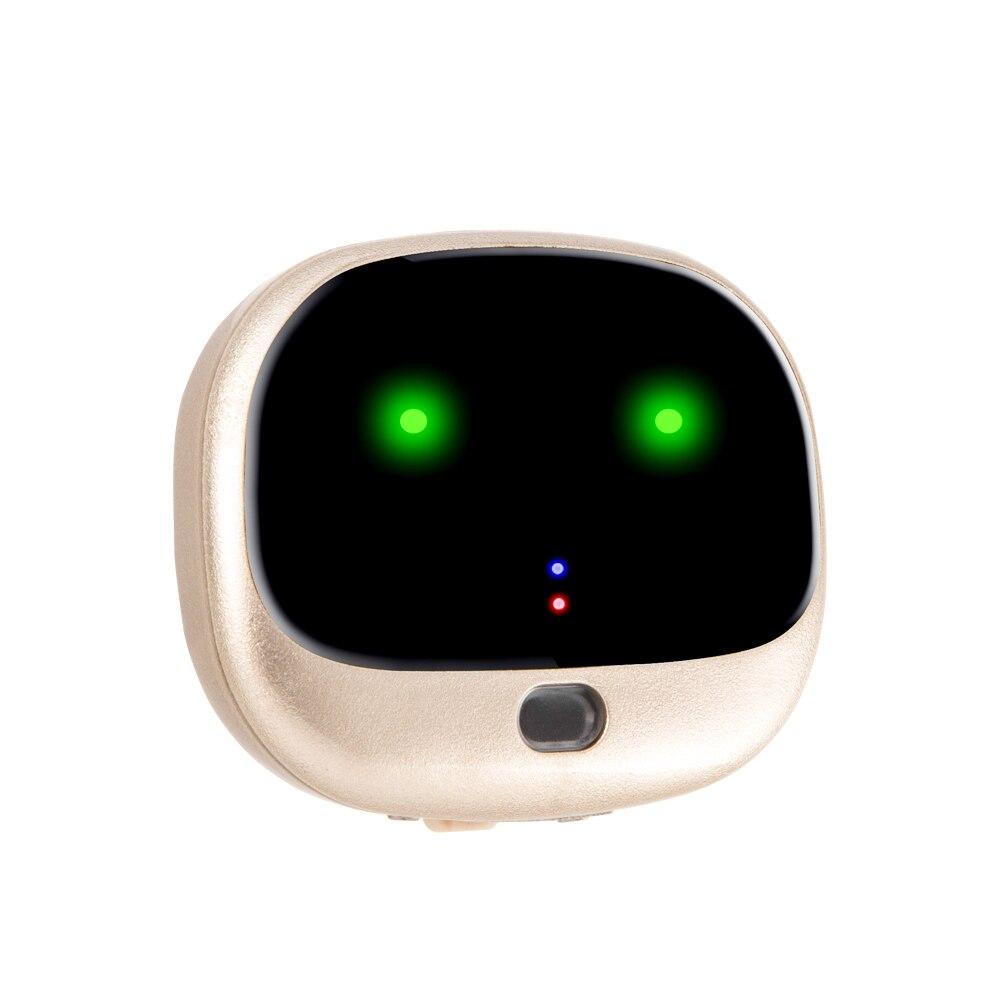 4G 3G 2G Pet GPS tracker RF-V43 GPS WiFi clôture positionnement chien lapin GPS IP67 étanche capteur lumières étape comptage trouver