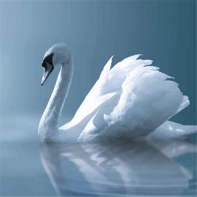 Custom Photo Wallpapers For Walls 3D White Swan Lake Animals Modern Wall Murals For Living Room Wall Papers Home Decor Bedroom