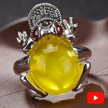 Dinheiro riqueza israel âmbar s925 prata anel esterlina boa sorte fengshui fortuna sapo pedra preciosa chinatown presente chinês