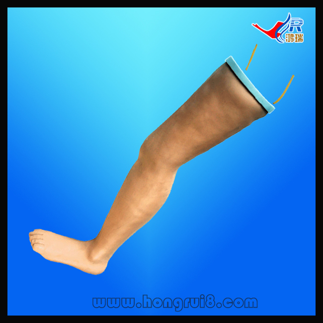 ISO Advanced IV Infusion Training Model, Intravenous Transfusion Leg simulator, Nursing Leg economic injectable training arm model with infusion stand iv arm injection teaching model