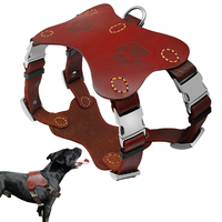Pitbull Terrier Collars Harnesses Genuine Leather Dog Hraness Vest Large Dogs Training Harnesses Perro K9 Golden Retriever