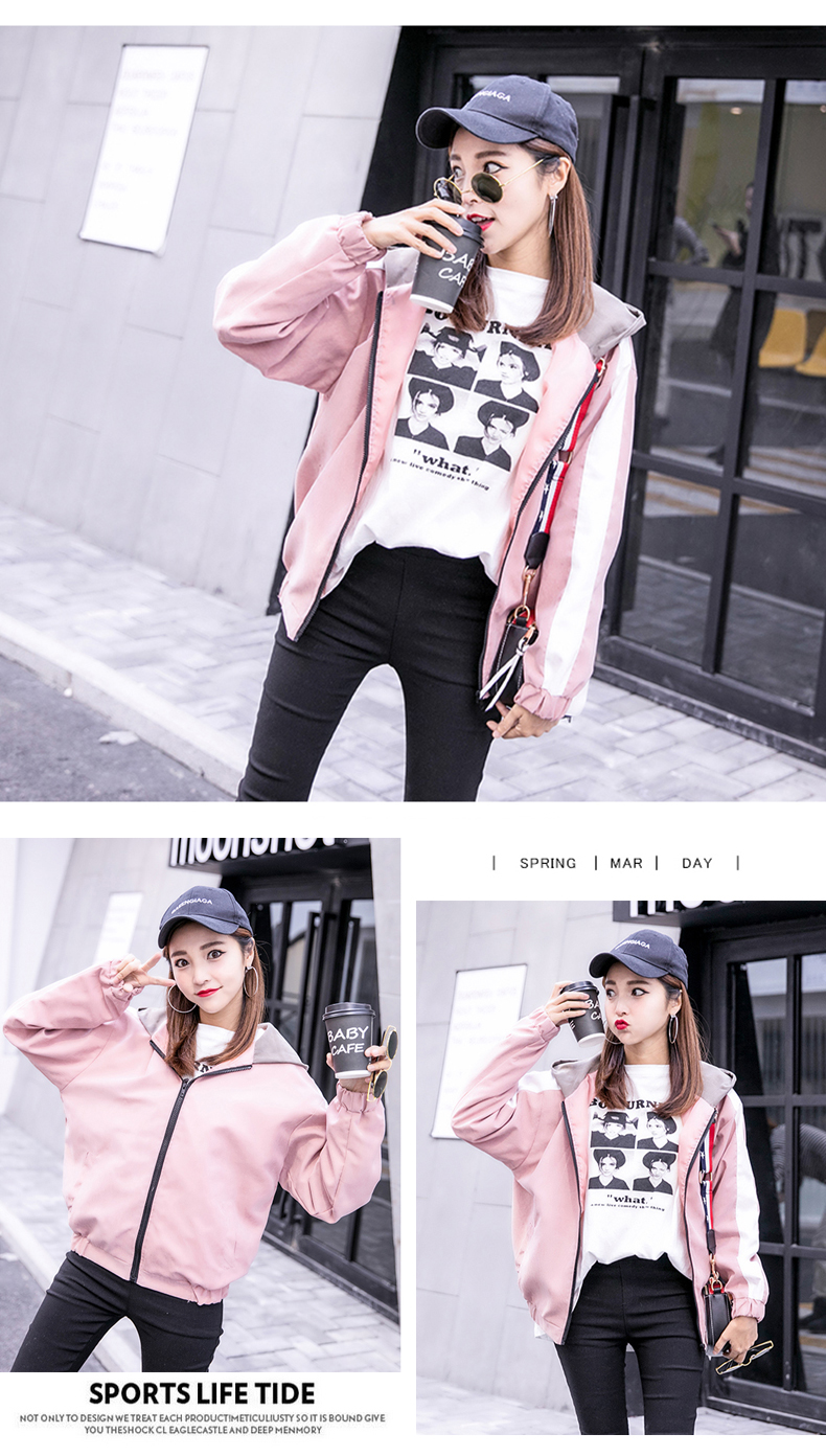 2019 Autumn Jacket Womens Streetwear Patchwork Hooded Totoro Jackets Kawaii Basic Coats harajuku Outerwear chaqueta mujer 48