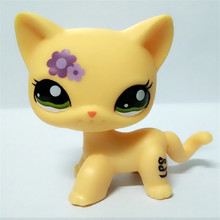 Buy littlest pet shop and get free shipping on - Petshop tigre ...