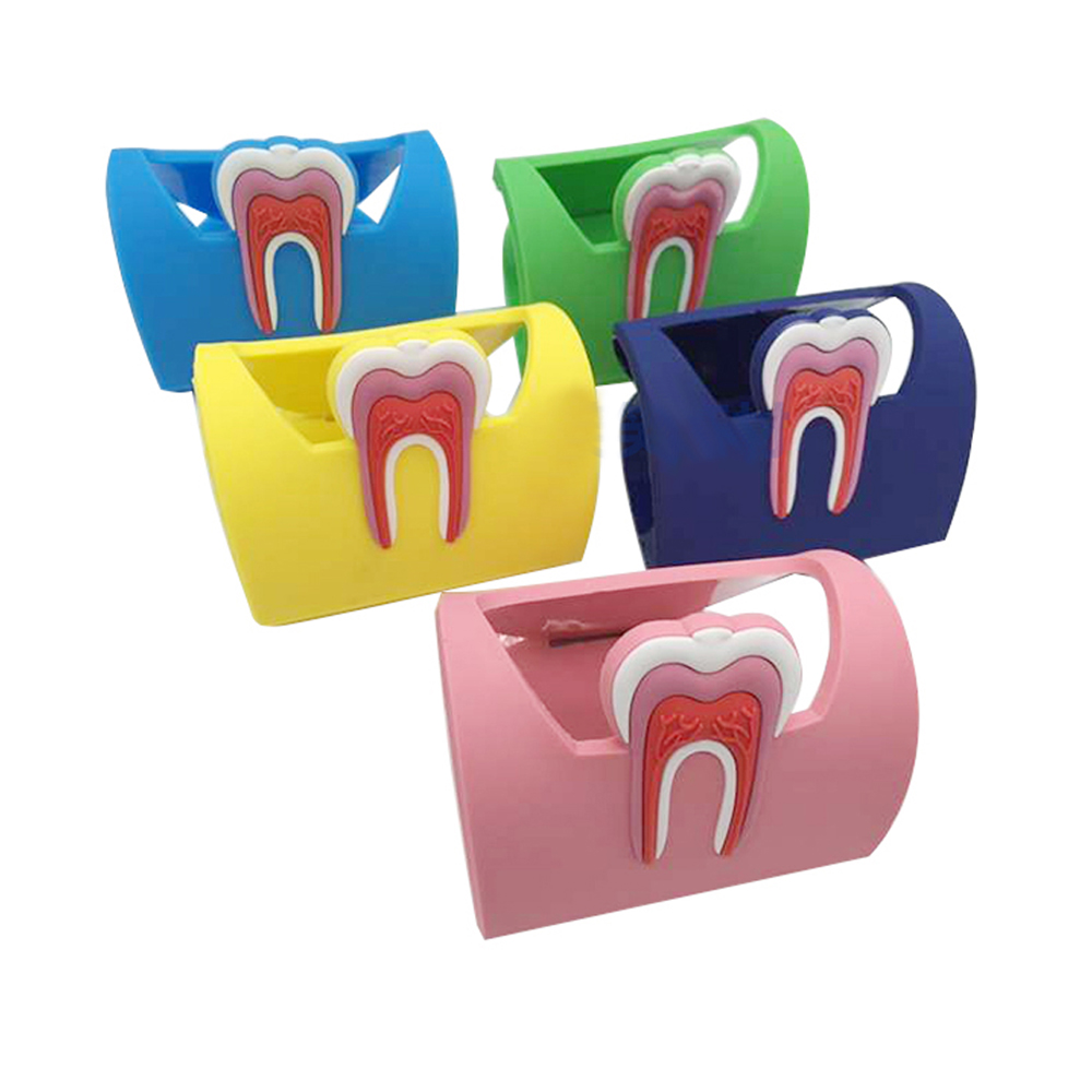 5pcs/pack 5 color Beautiful Business Card Holder Used In Dental Clinic Rubber Tooth Shape Cardcase
